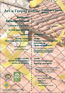 Art a l'espai public projecte safareig 8 i 9 de juny